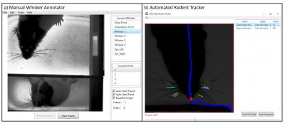 Manual whisker tracker and automated rodent tracker