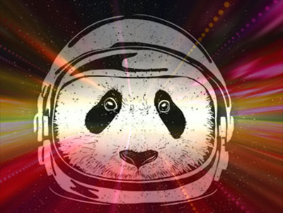 pandas_in_space copy.jpg