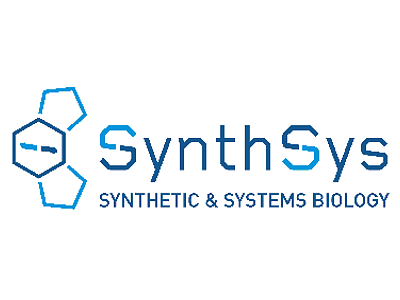 Synthsys