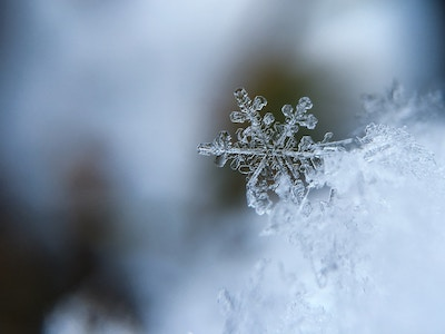 close-up of snowflake